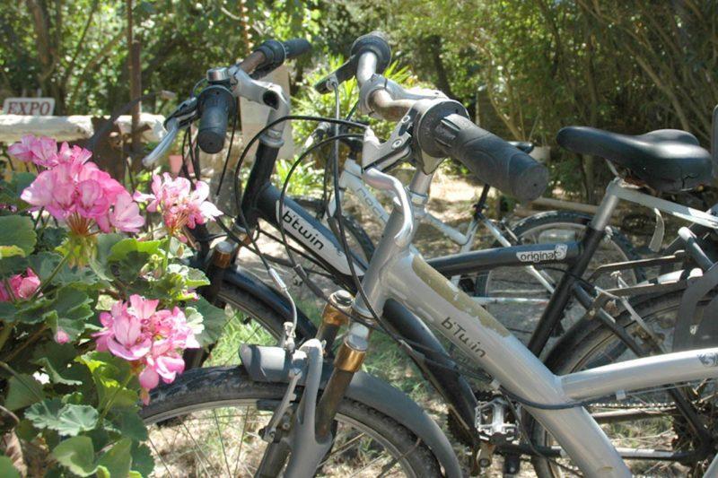 Location de vélos VTC